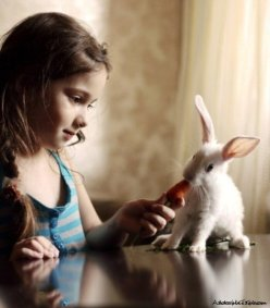 baby-beautiful-child-cute-rabbit-adorabletab-com