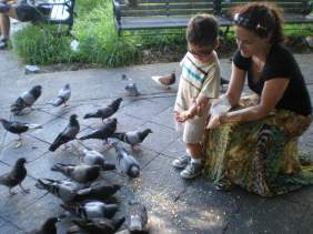 pigeonpark