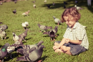 boy-with-pigeons