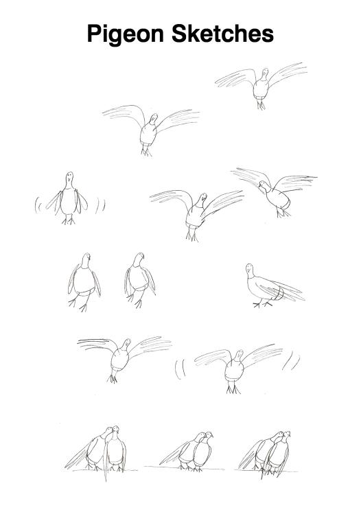 Pigeon drawings large jpeg
