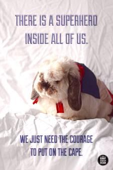 bunny superhero cape