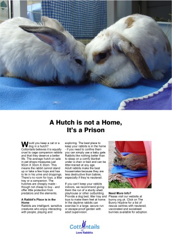 A hutch is not a home, it's a prison